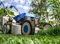 kosiarka do trawy