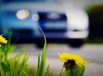 samochód na wiosnę